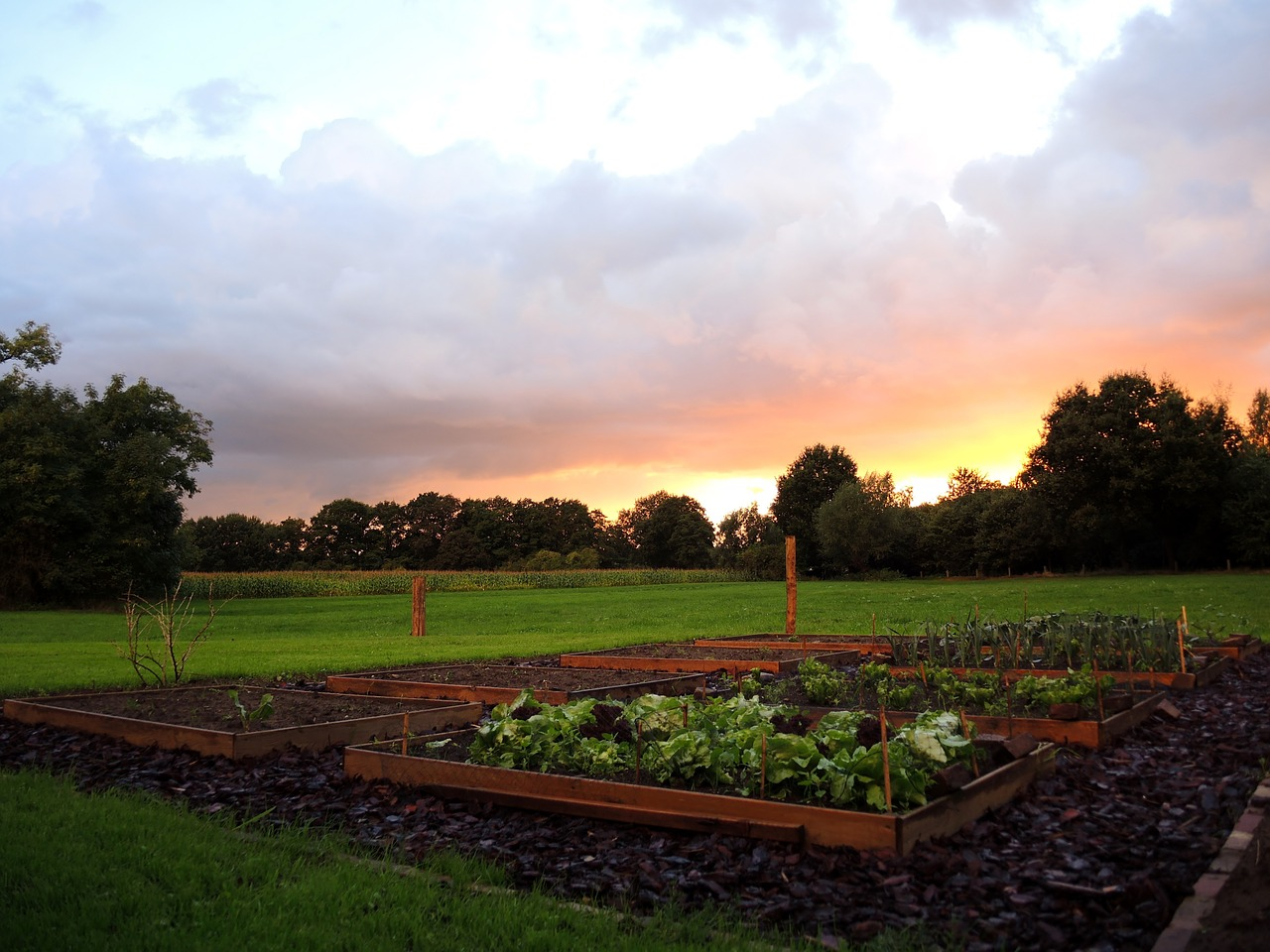 comment creer des allees pour son jardin, allées de potager,comment creer son potager, exmple de potager, ou faire un jardin, comment faire un jardin, conseils pour jardiner, comment planter un jardin